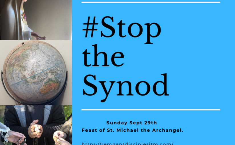 #Stop the Synod