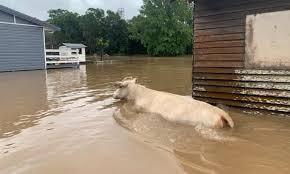 floods NSW 2021