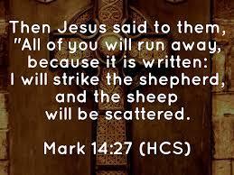 Mark 14 -27